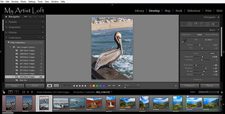 how to make your photo a circle adobe cc