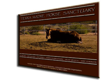 Tierra Madre Horse Sanctuary Website